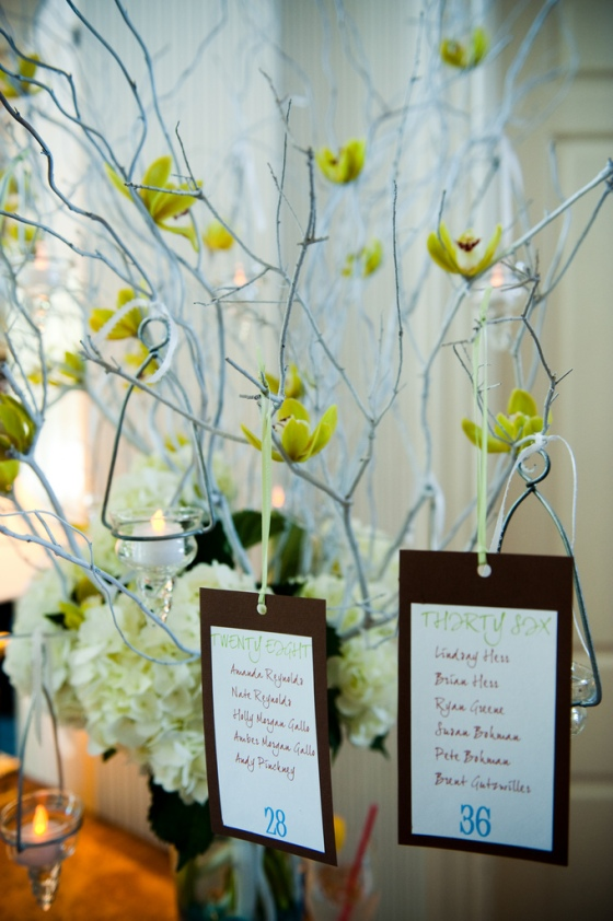 Silver Branches, Green Mini Cymbidium Orchids