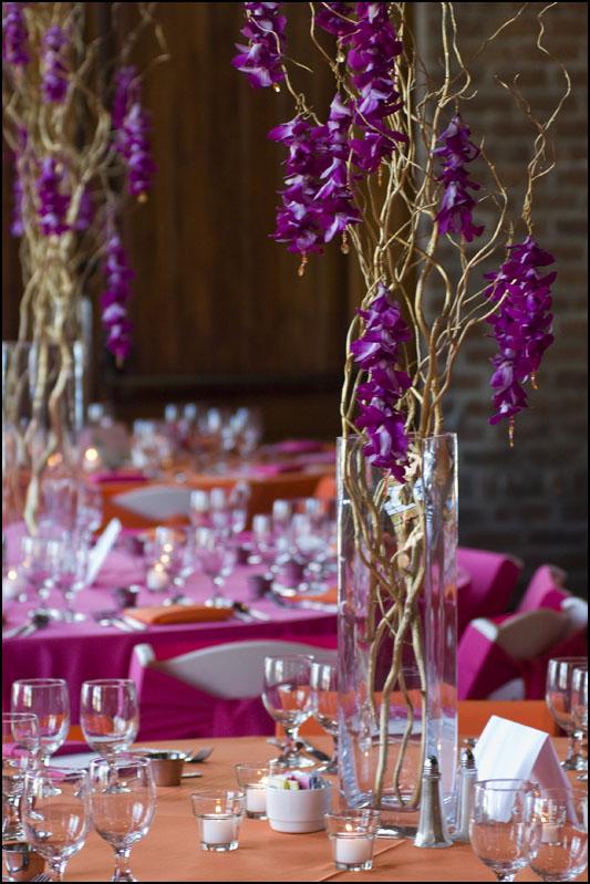 Curly Willow, Purple Cymbidium Orchids